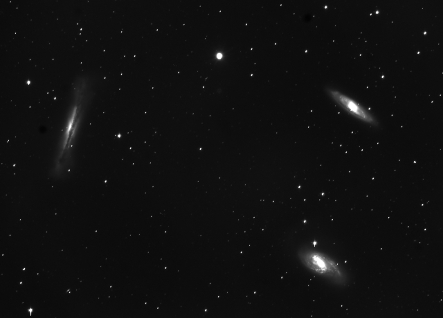 Leo Triplet (or Leo Trio) - M65, M66 and NGC3528 (north is to upper left, 120 min. exposure) Credit: Rex Parker