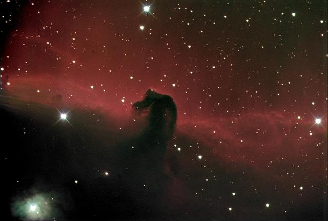 Horsehead Nebula Credit: Rex Parker